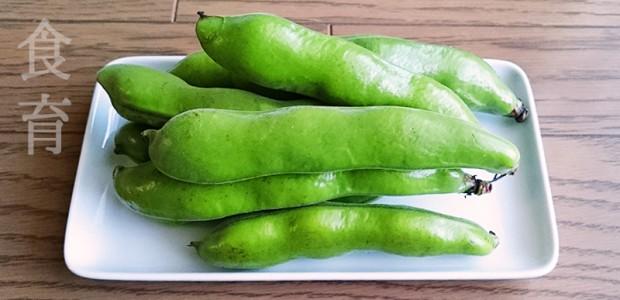 2才の食育 そら豆と枝豆